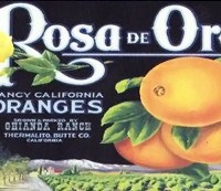 Rosa De Oro Label