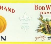 bob-white