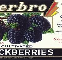 gerbro_blackberries