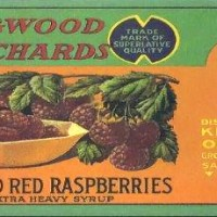 kingwood-orchards