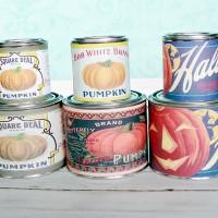 sweet-pumpkin-spice-all